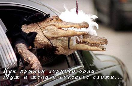 http://margarita-m1.narod.ru/holiday202.jpg